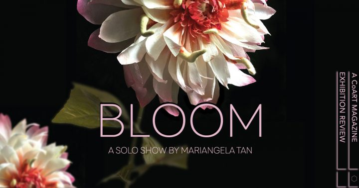 Mariangela Tan's Bloom